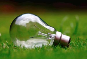 How Much Can I Earn as a Scopist - Lightbulb lying in the grass
