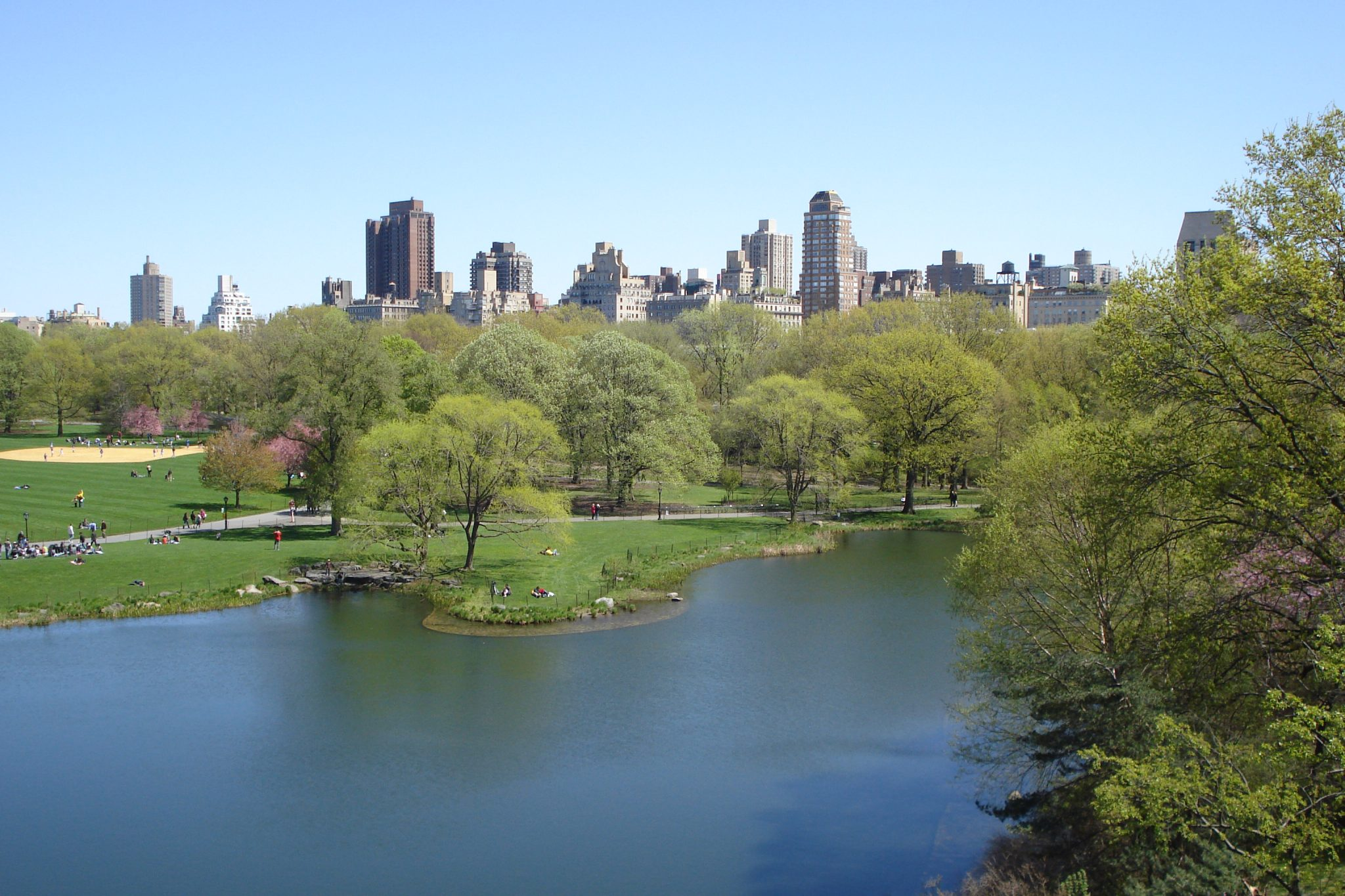 Central Park April 2010 view of a lake with grass and trees with the city in the background