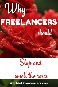 Why freelancers should stop and smell the roses