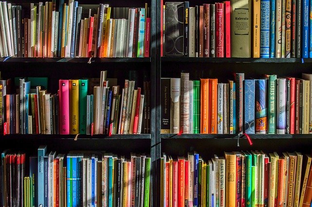 Bookcase with hundreds of colorful books for freelance courses